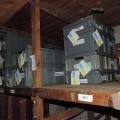 photo 5 Etiquetage des collections avant chantier (6)